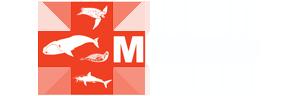 MMARN - Maritime Marine Animal Response Network
