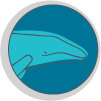 icon-headshape-pointed